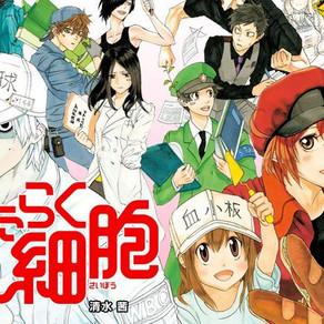 Cells at Work! | Episódio especial do anime disponível em breve!