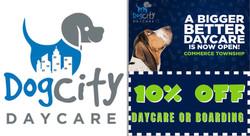 Dog City Daycare