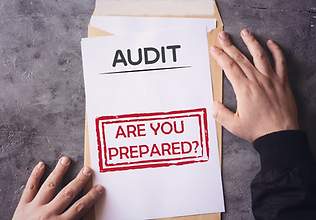 Detroit's best tax audit defense and attorneys | Levy and Associates Tax Resolution
