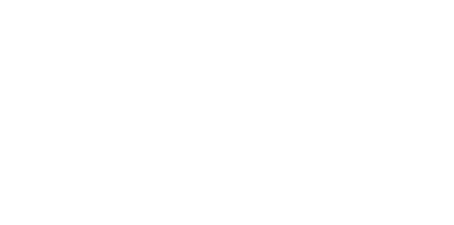 Best of Detroit health, PPE and lifestyle products   Trip Wipes
