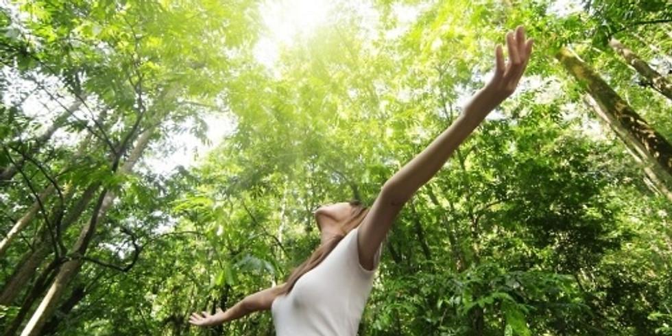 """Atelier yoga """"Trouver son équilibre"""""""