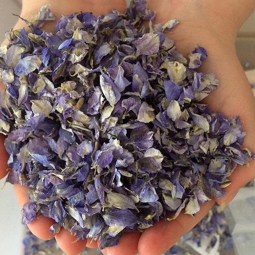 Blue delphinium petals