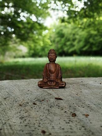 bouddha en bois dans la nature
