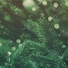 christmas-cheer-evergreen-still.jpg