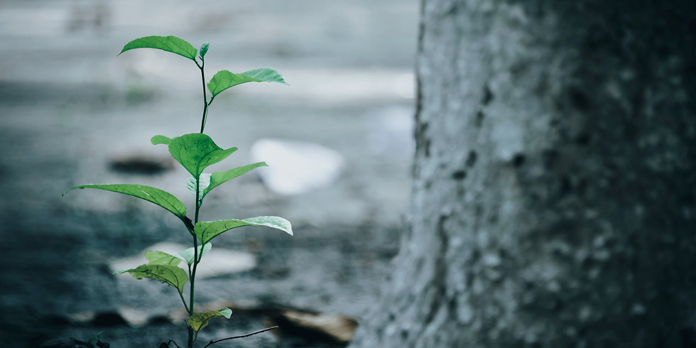 Change Happens; Growth is Optional: Resilience During the Long Haul