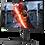 Thumbnail: LG 27GN750 Gaming Monitor
