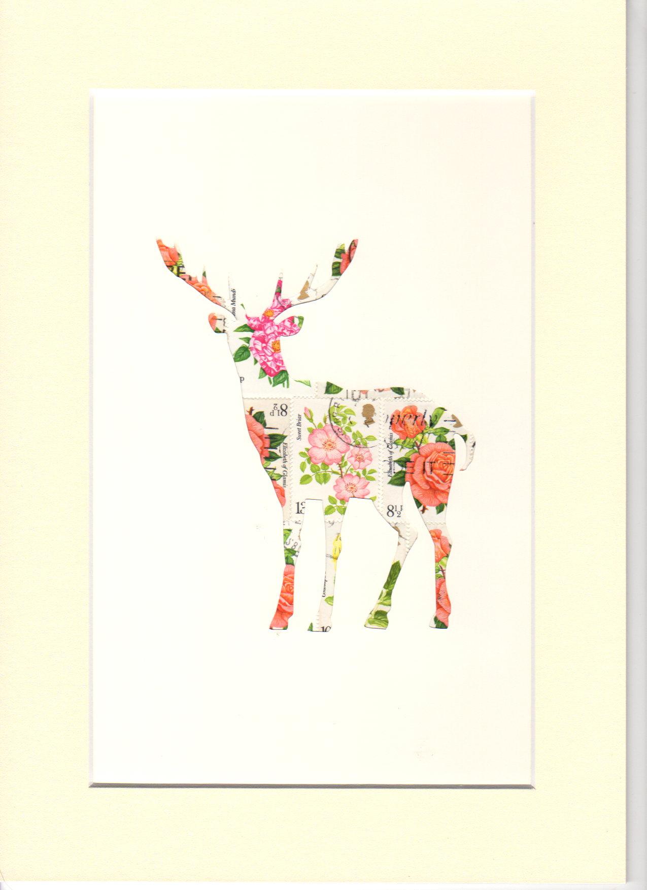 stag rose041.jpg