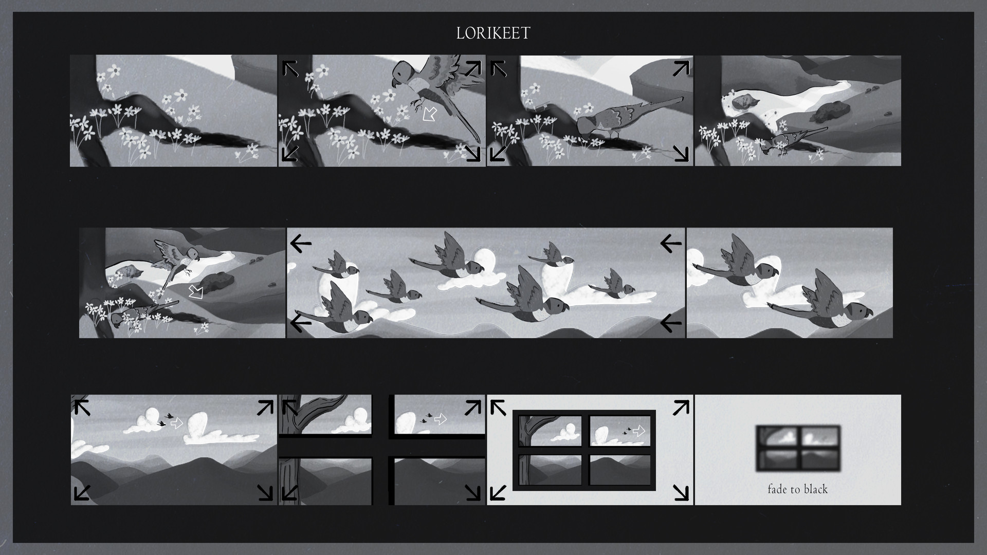 Lorikeet Storyboards_1.jpg