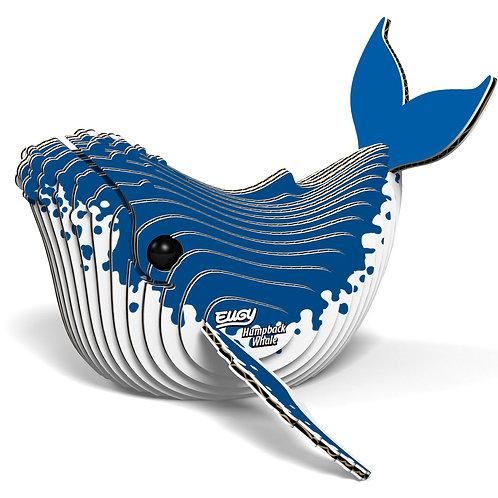 Eugy: Humpback Whale