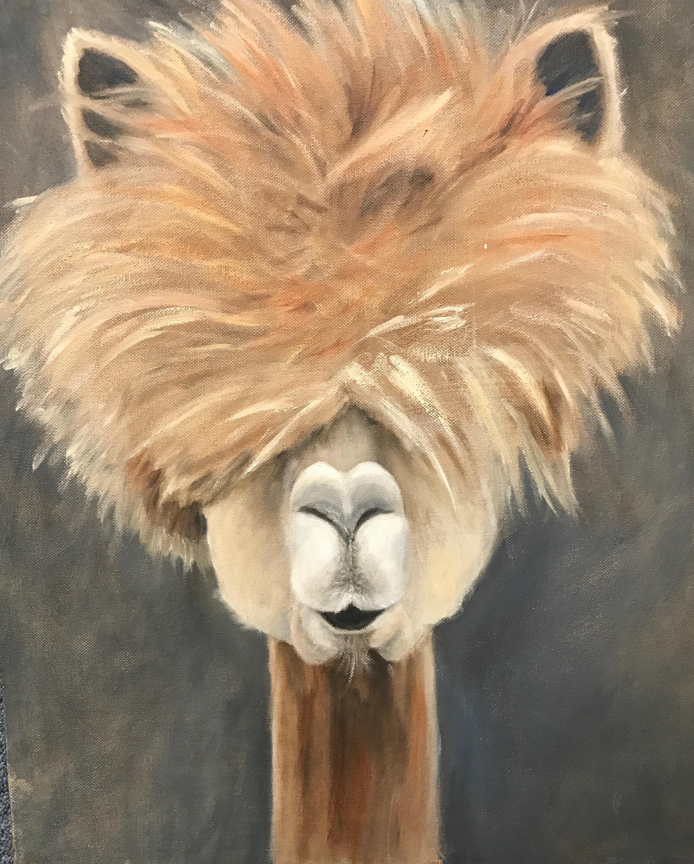 Llama (oil).jpeg