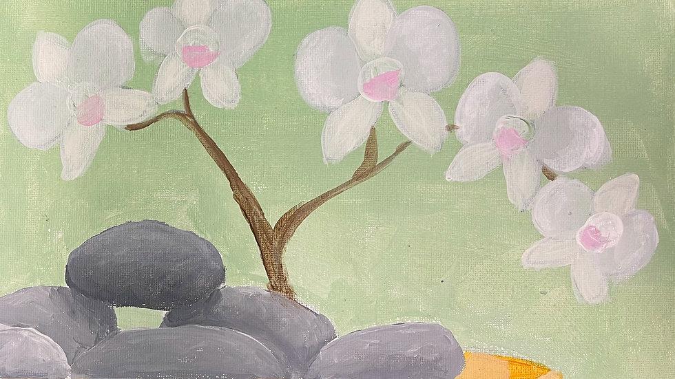 Zenadu Paint Kit (16x20)