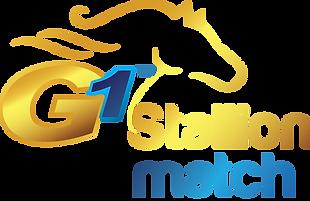 G1 Stallion Match Transparent Skinny.png