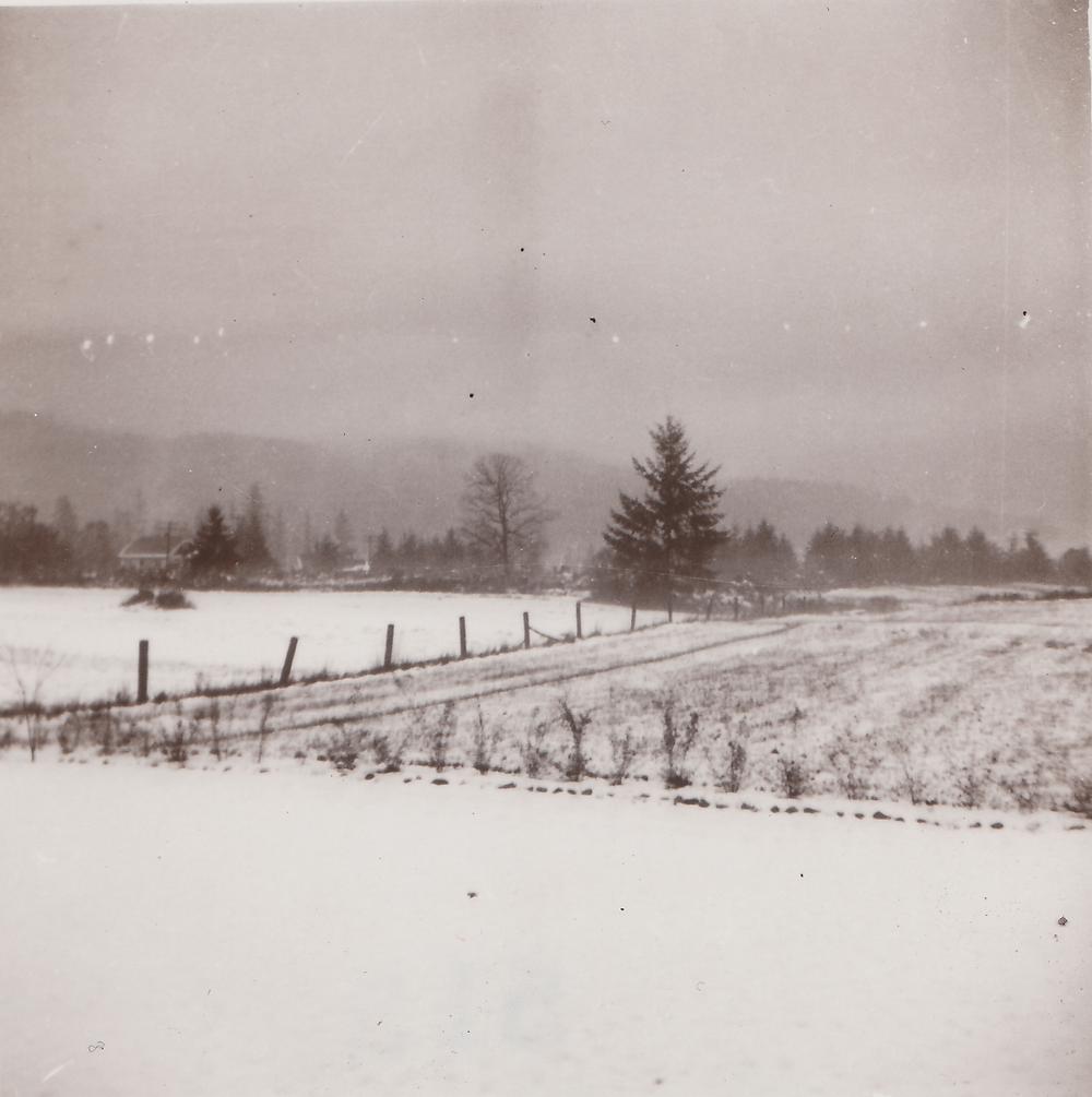 Snow in field.