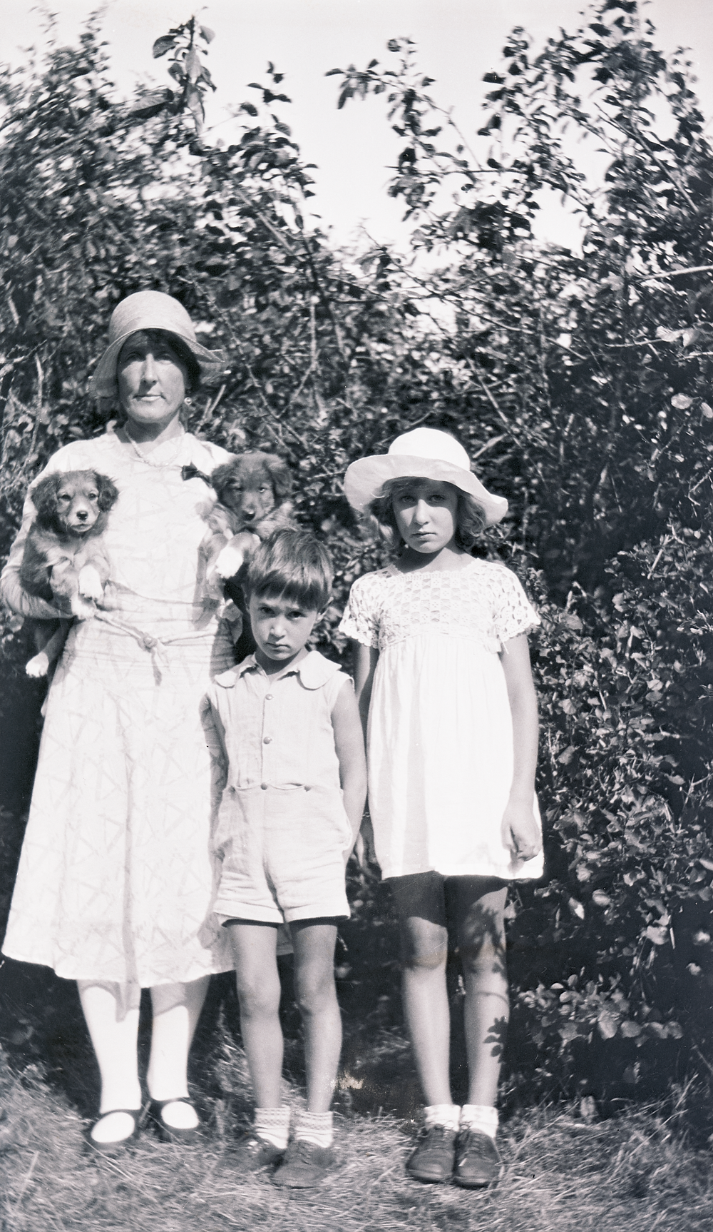 Woman, children, and puppies.