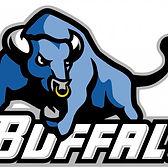 BuffaloBulls-720x500.jpg