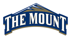 Mount-St.-Mary's-Mountaineers-Logo.png