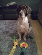 Bailey and his Easter themed prizes...jp