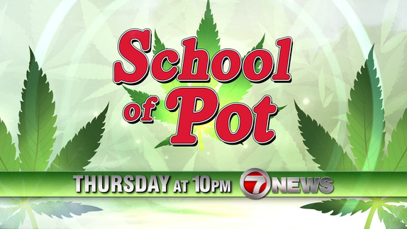 School of Pot - 2D After Effects Animation