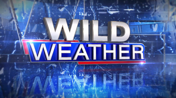 Wild Weather Open Keyable