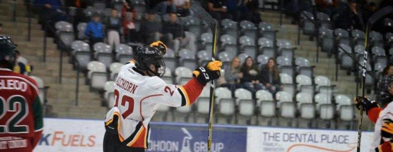 Vito's Hockey Player