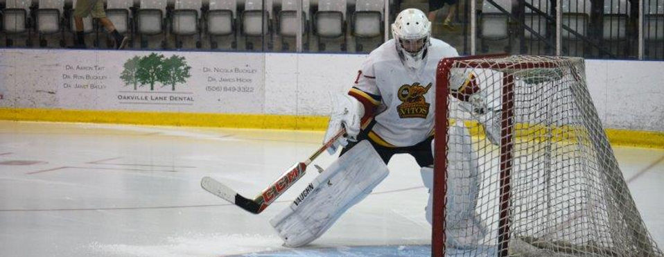 Vito's Hockey Goalie