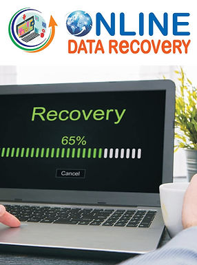 ONLINE DATA RECOVERY_page-0001 (1).jpg