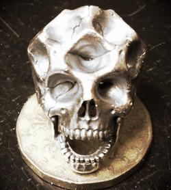 skull01.jpeg
