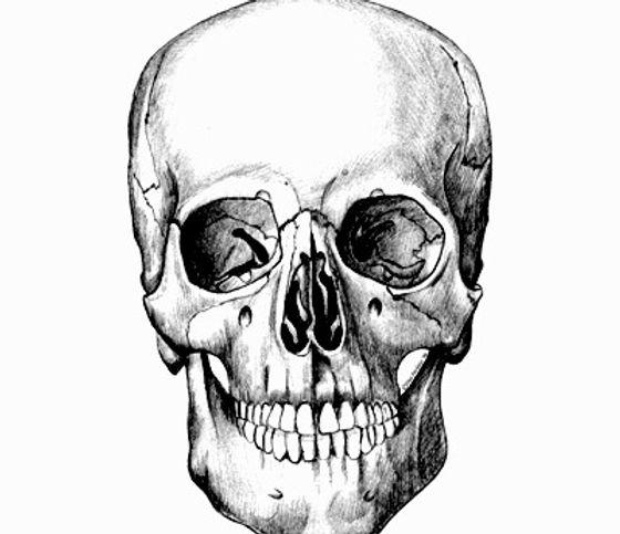 skull hijiri silver works