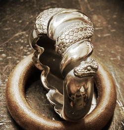 snake01.jpeg