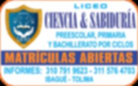 Liceo Ciencia y Sabiduria.png