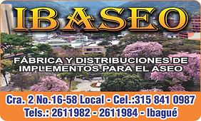 Ibaseo.png