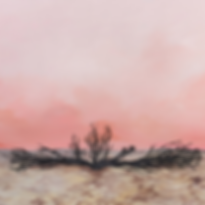 MOUNTAIN DUST 1.png