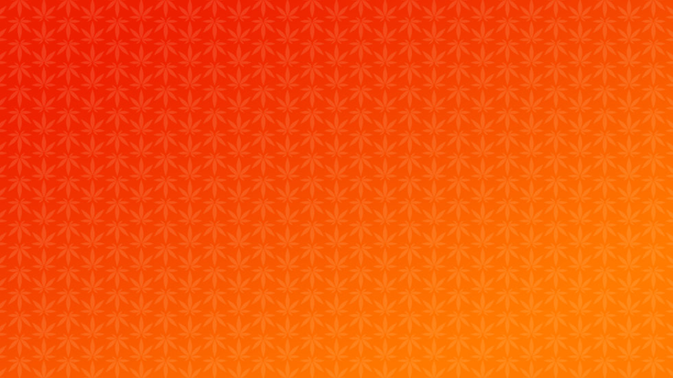 MyHi Website Pattern.jpg