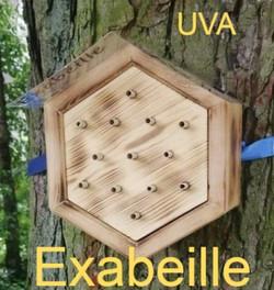Exabeille nichoir à abeilles sauvages