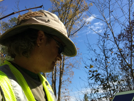 What a Land Surveyor Wants You to Know