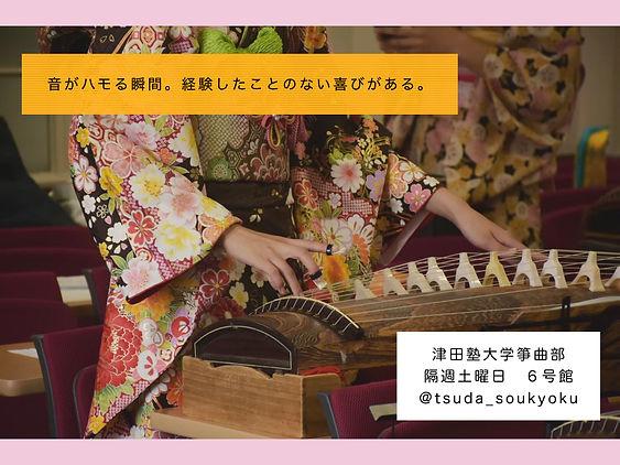 津田塾大学箏曲部新歓ポスター.001.jpeg