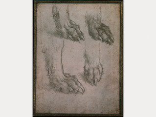 Leonardo da Vinci - Studies of the Paw of a Dog or Wolf