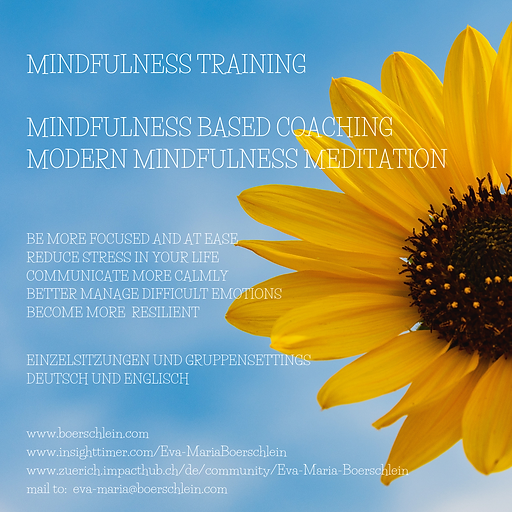 Mindfulness_Training.png