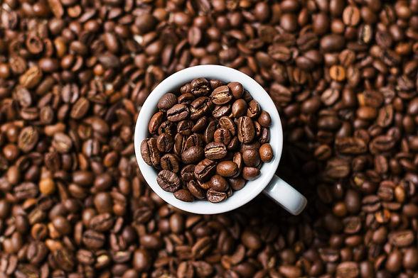 coffee_field.jpg