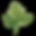 パセリの葉
