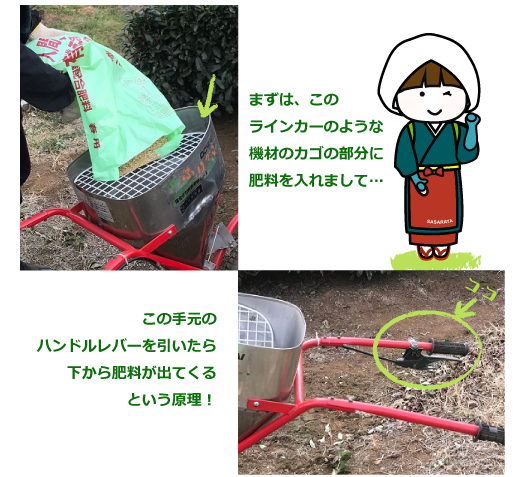 施肥の手順