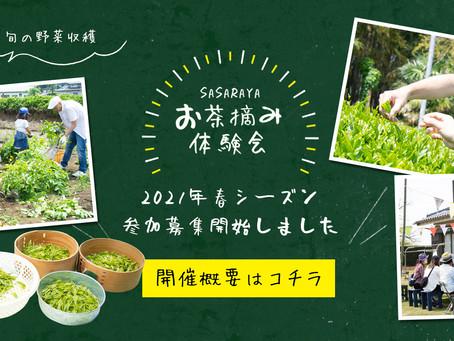 2021年 春のお茶摘み体験会 募集開始!
