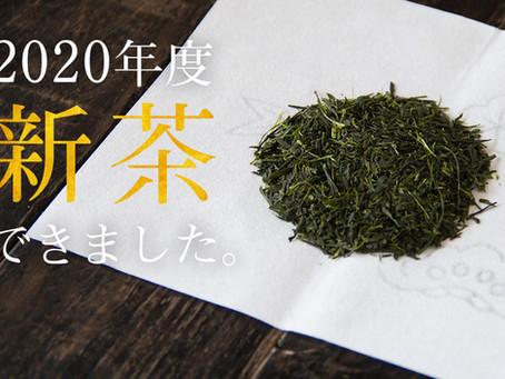 2020年度の新茶ができあがりました!