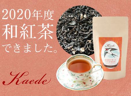 2020年度の和紅茶ができあがりました!