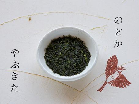 2021年度 お茶の個性のお話 ~のどか編~