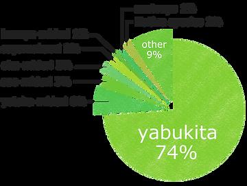 円グラフ英語.png