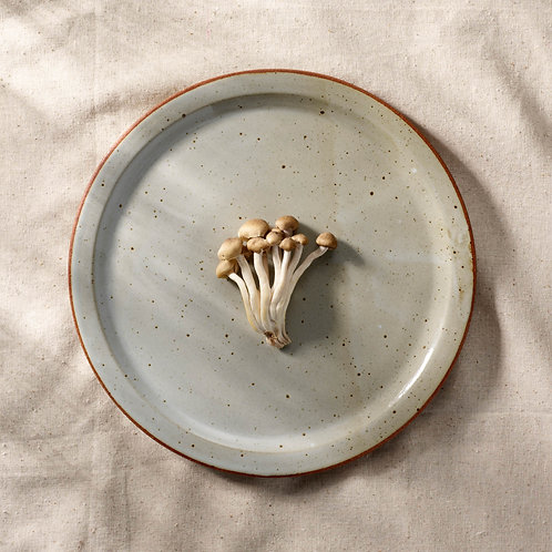 Dinner Plate with Flat Rim