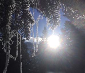 Wärmende Sonnenstrahlen