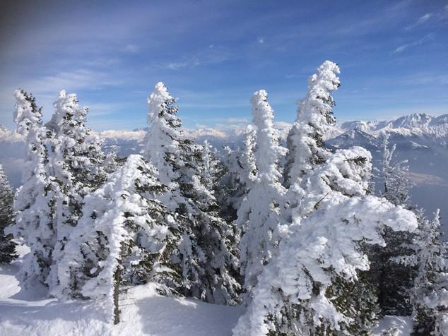 Wundervolle Winterwelt
