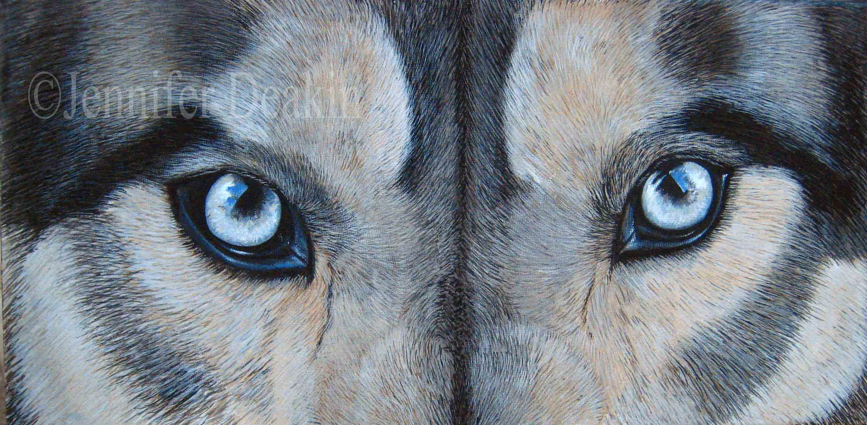 Wolf eyes SOLD